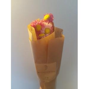 Wildflowers - Droogbloemen (4)